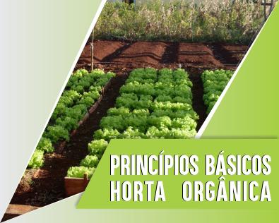 Princípios Básicos da Horta Orgânica